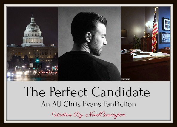 The Perfect Candidate3